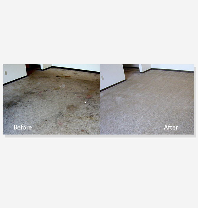 Before & After Carpet Cleaning Fishers Carpet Cleaning